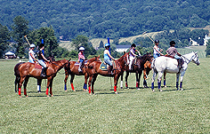 Polo School in Virginia