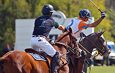 Why Us - Virginia International Polo Club